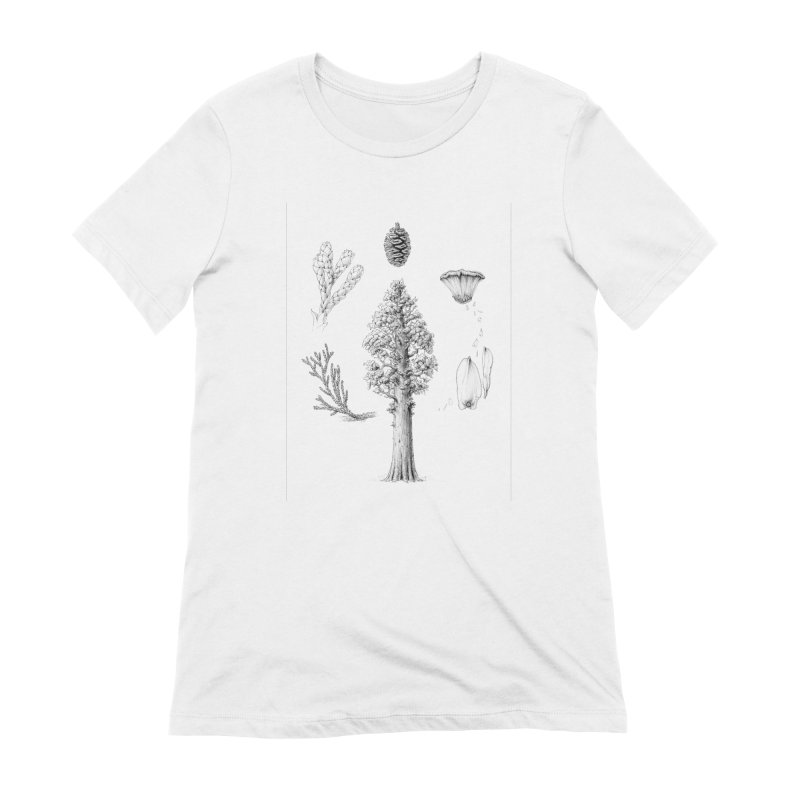 Giant Sequoia Women's Extra Soft T-Shirt by The Pen And The Pangolin