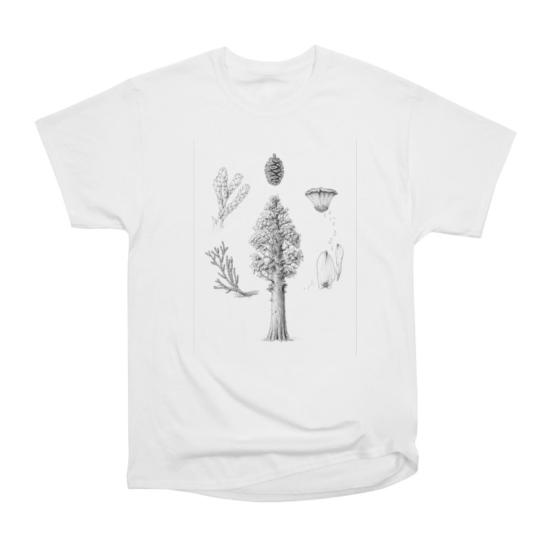 Giant Sequoia Women's T-Shirt by The Pen And The Pangolin