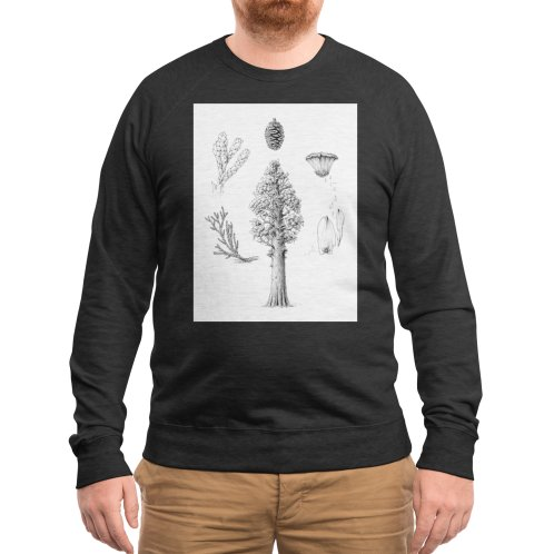 image for Giant Sequoia