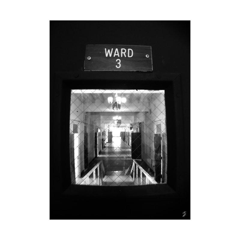 Ward 3 by Melissa's Photos