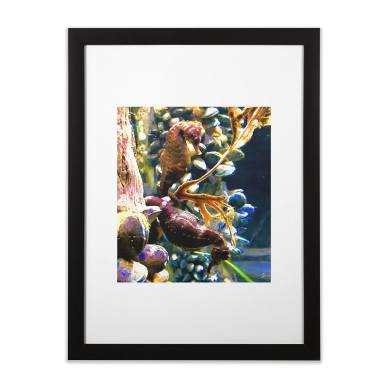 Under the Sea Home Framed Fine Art Print by Melissa's Photos