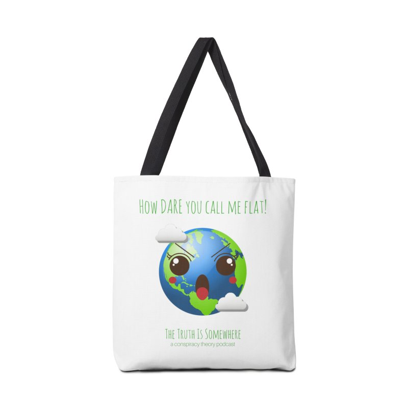 Not Flat Accessories Bag by The Truth Is Somewhere