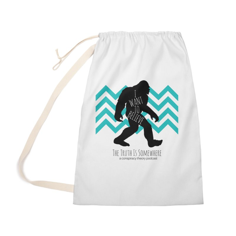 I Want To Believe Accessories Bag by The Truth Is Somewhere