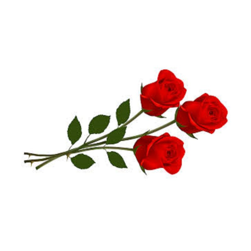 3 red roses by The Ways of The Old's Artist Shop