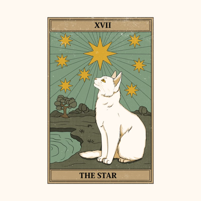 The Star Home Tapestry by thiagocorreamellado's Artist Shop