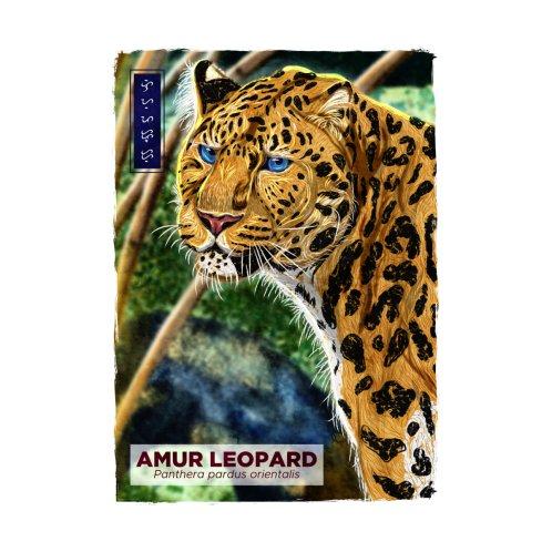 Design for Amur Leopard - White