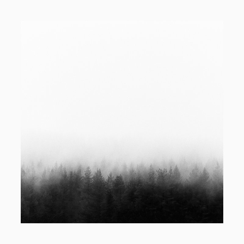 Noble Woods of Grey Men's T-Shirt by Threadless Artist Shop