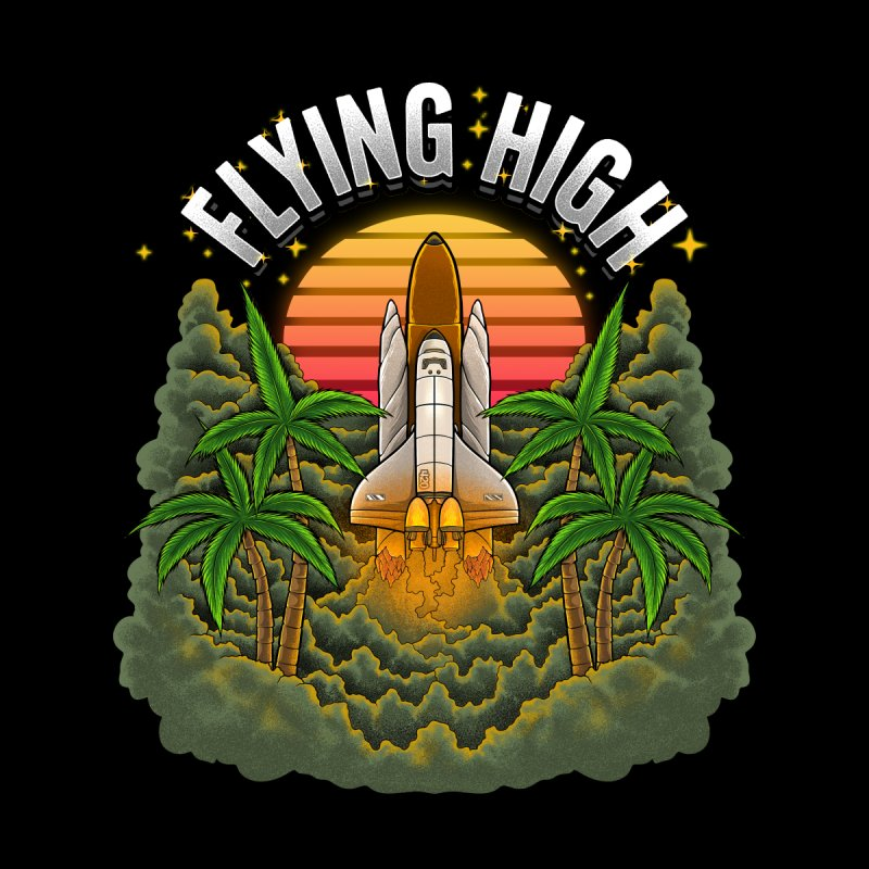 Flying High Women's Pullover Hoody by Threadless Artist Shop