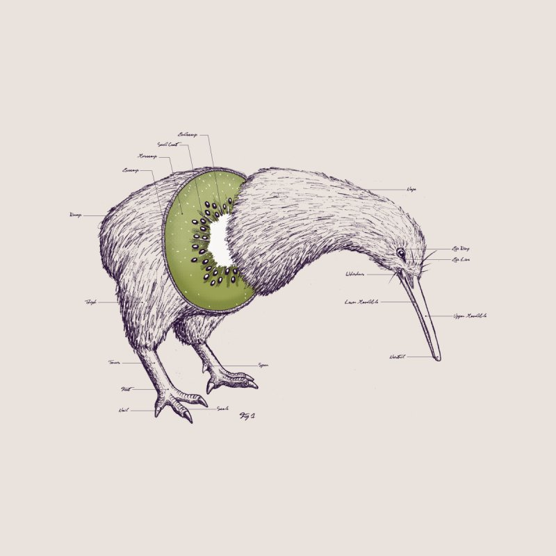 Kiwi Anatomy Home Throw Pillow by Threadless Artist Shop