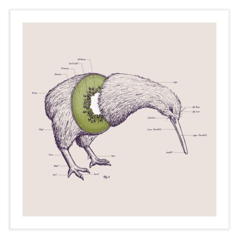 Kiwi Anatomy Home Fine Art Print by Threadless Artist Shop