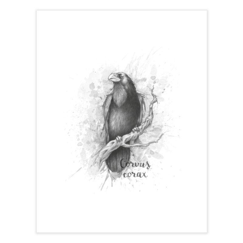 Raven Home Fine Art Print by Tiger74  - t-shirts with a claw!