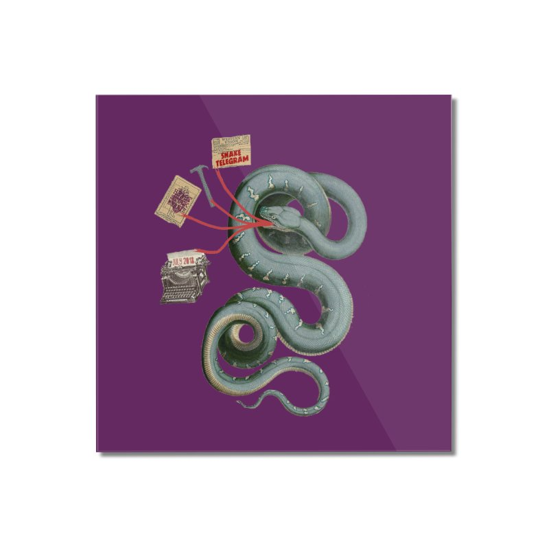 Snake Telegram Home Mounted Acrylic Print by Time Machine Supplies