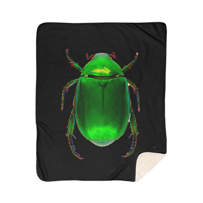 Scarab Beetle Home Sherpa Blanket Blanket by Toban Nichols Studio