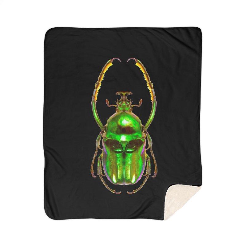 Ischnoscelis Dohrni Beetle Home Sherpa Blanket Blanket by Toban Nichols Studio