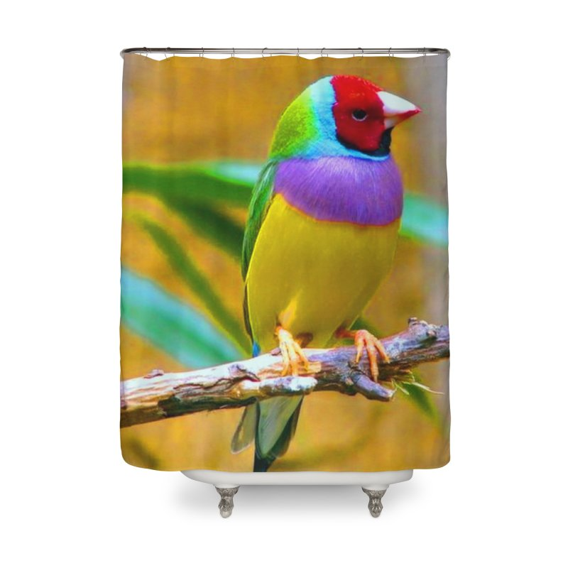 Prty Brd Home Shower Curtain by Toban Nichols Studio
