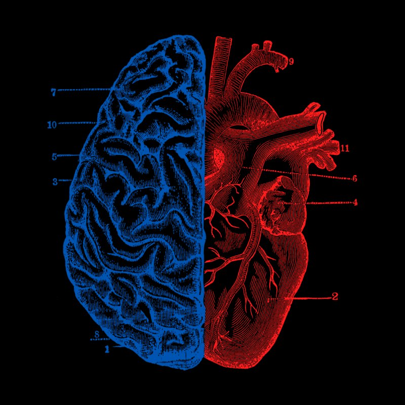 Heart and Brain   by Tobe Fonseca's Artist Shop