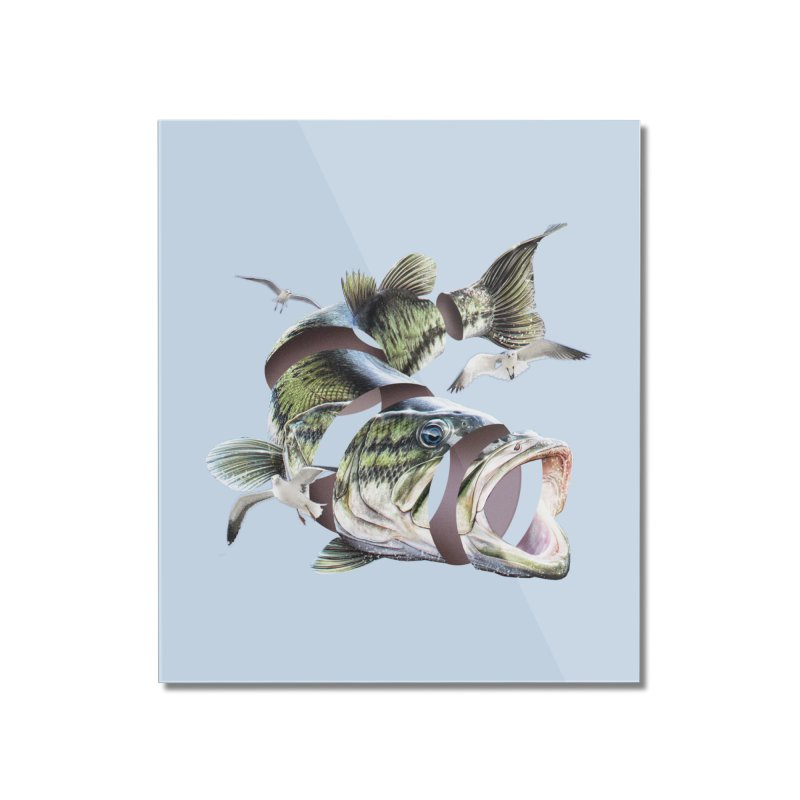 Flying Fish Home Mounted Acrylic Print by Tom Burns