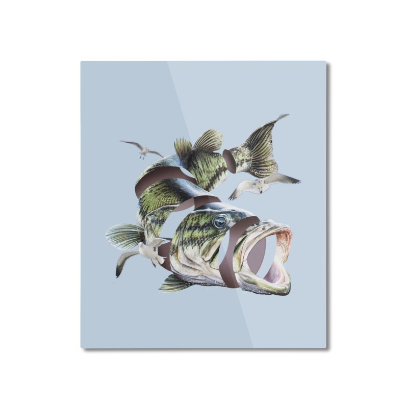 Flying Fish Home Mounted Aluminum Print by Tom Burns