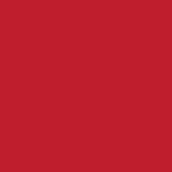 Tom Burns Logo
