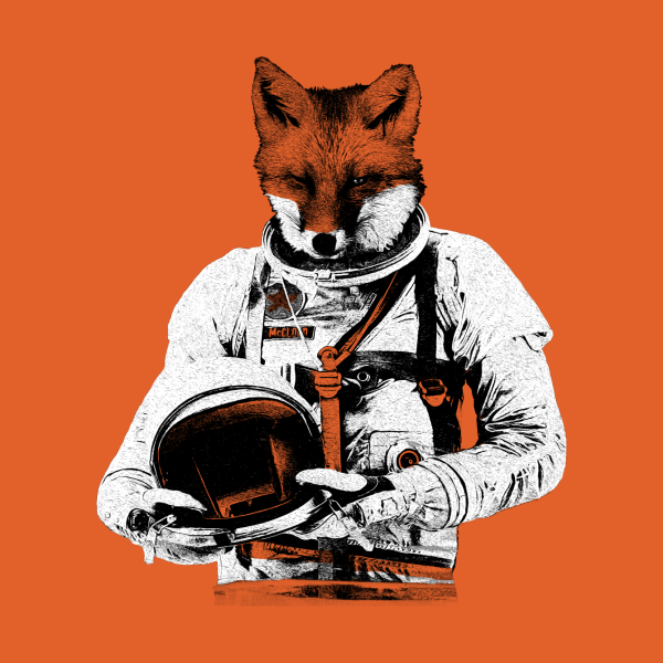 Design for The Fastest Fox