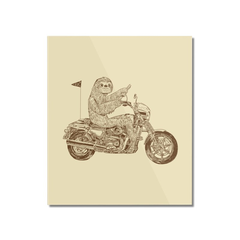 Sloth Rider Home Mounted Acrylic Print by Thomas Orrow