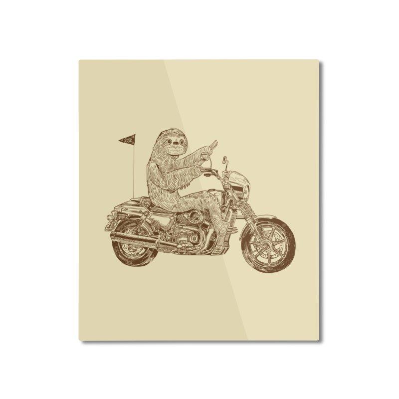 Sloth Rider Home Mounted Aluminum Print by Thomas Orrow