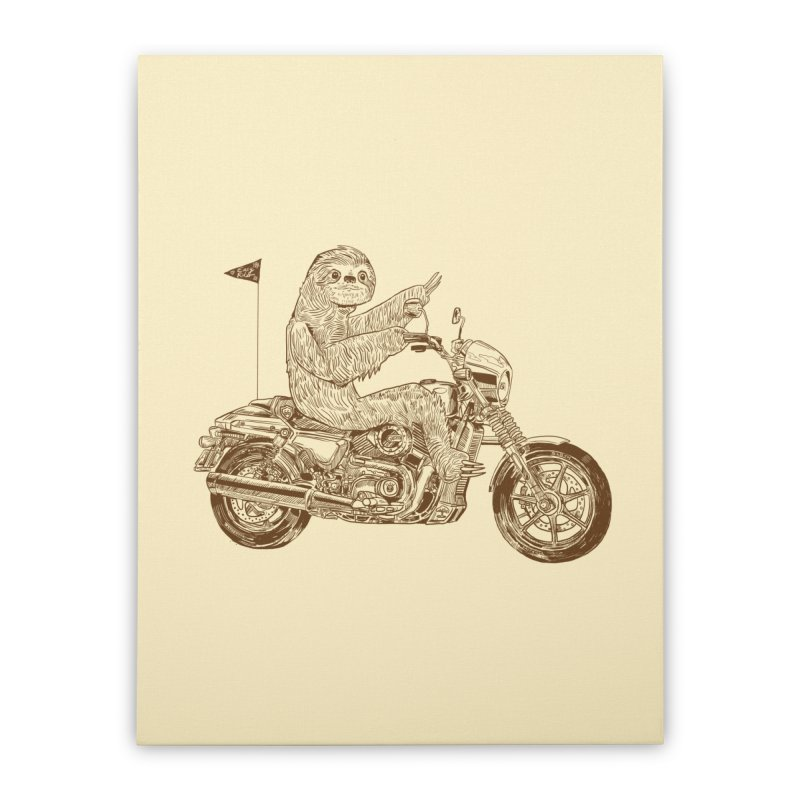 Sloth Rider Home Stretched Canvas by Thomas Orrow
