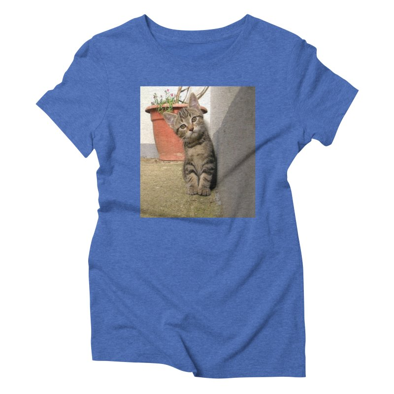 bust that cache Women's Triblend T-Shirt by toolbar's Artist Shop
