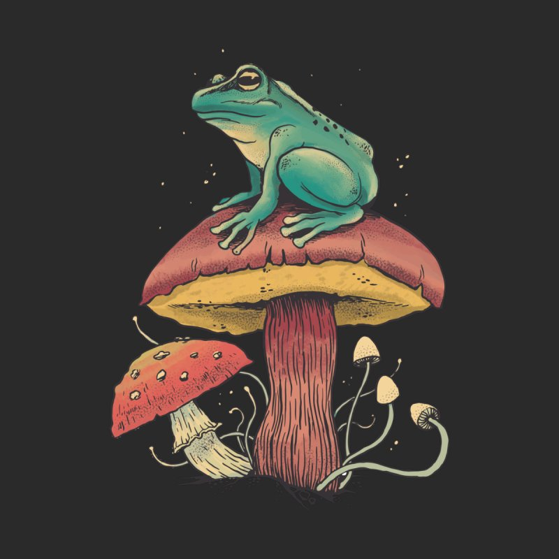 Frog Sitting Atop Mushroom Men's T-Shirt by Toxic Onion - A Popular Ventures Company
