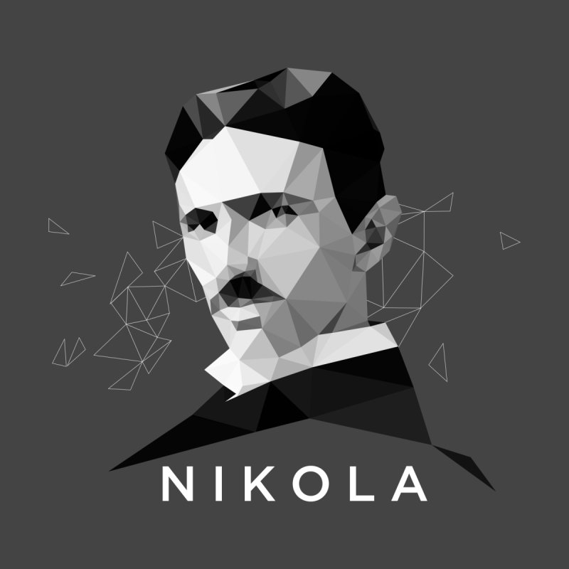 Nikola Home Stretched Canvas by ToySkull
