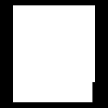 ToySkull Logo