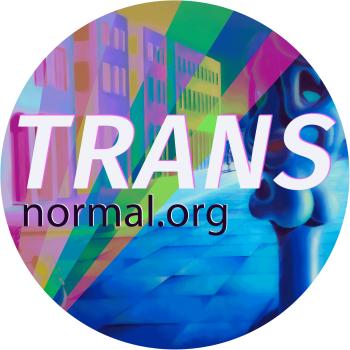 transnormal's Artist Shop Logo