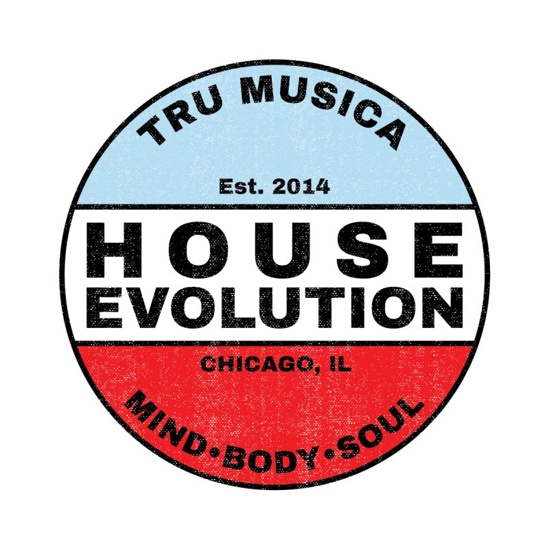 House Evolution Chicago Colors Kids Pullover Hoody by Tru Musica Merchandise