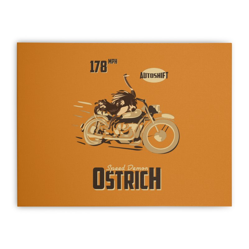 Speed Demon Ostrich Home Stretched Canvas by Trybyk Art