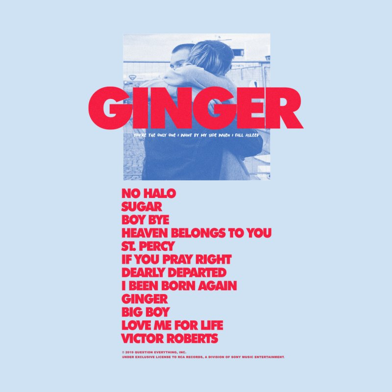 BROCKHAMPTON GINGER by tulleceria