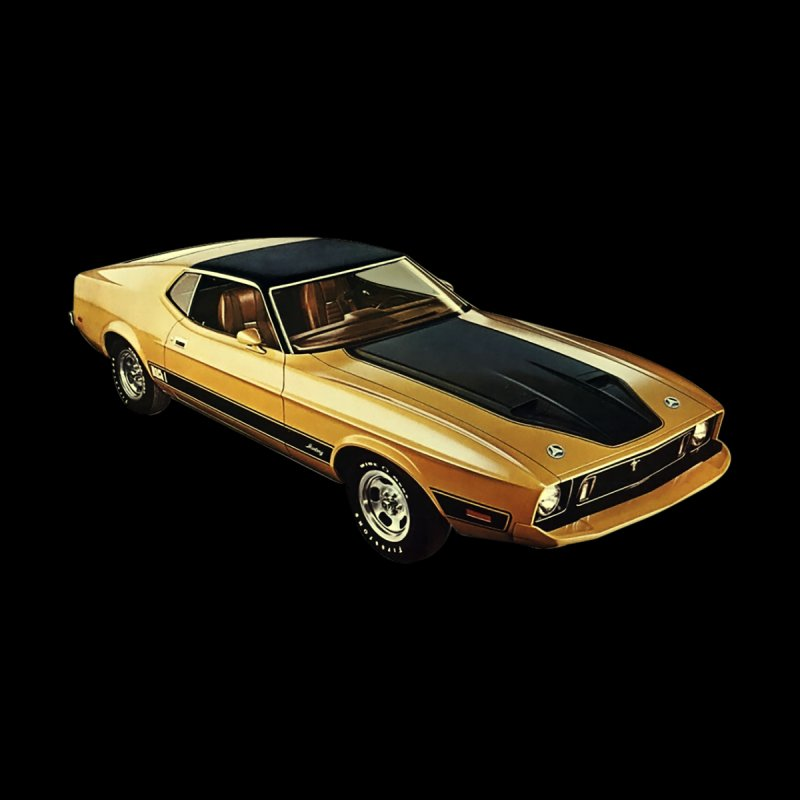TR_73MUSTANG_MACH1_GOLD by The Tunnel Ram Shop