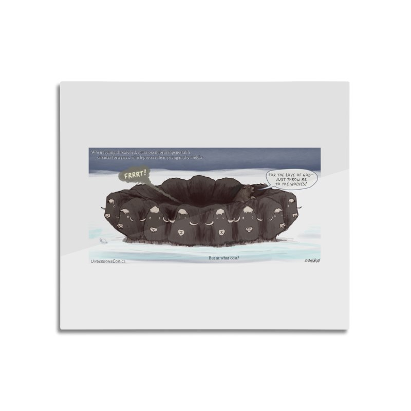 A Muskox Circle Home Mounted Aluminum Print by The Underdone Comics Shop