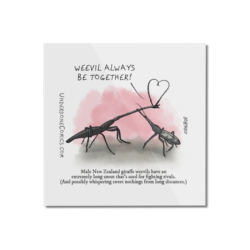 Giraffe Weevil Alvays Be Together Home Mounted Acrylic Print by The Underdone Comics Shop