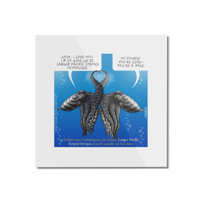 Lesser Pacific Striped Octopus Love Home Mounted Acrylic Print by The Underdone Comics Shop
