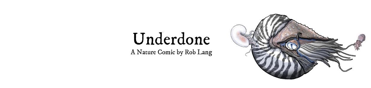 underdonecomics Cover