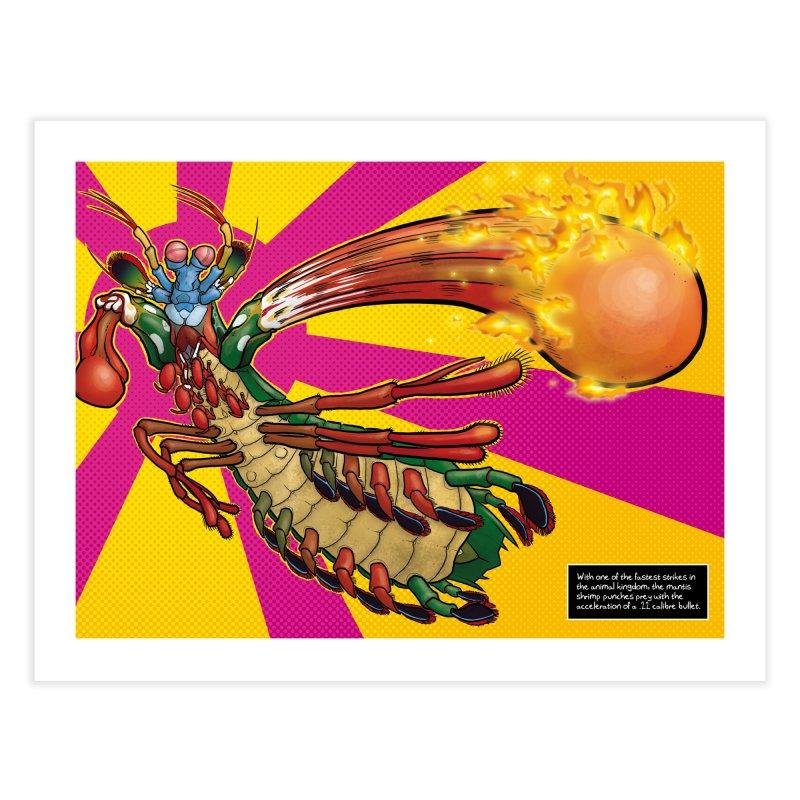 Mantis Shrimp Home Fine Art Print by UnearthlyMike's Artist Shop