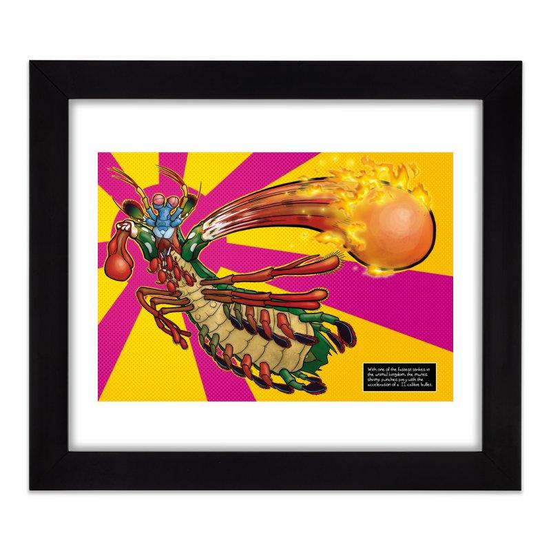 Mantis Shrimp Home Framed Fine Art Print by UnearthlyMike's Artist Shop