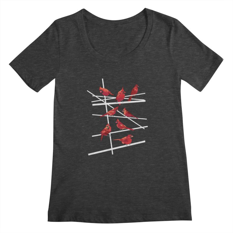 cardinal collection #1 Women's Scoopneck by upso's Artist Shop