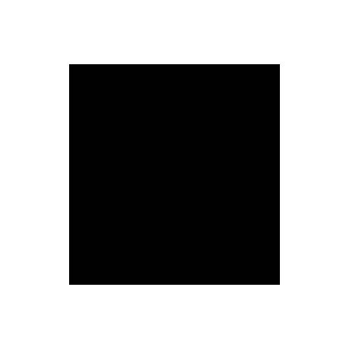 Var x Apparel Logo