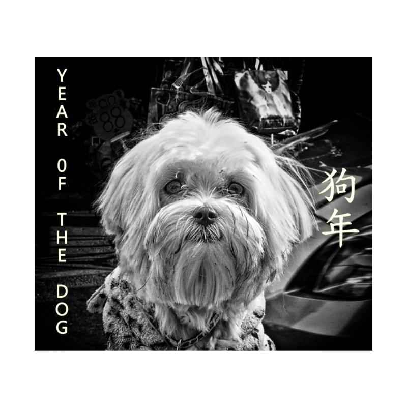 Year of the Dog None  by View From Brooklyn T-Shirt Shop