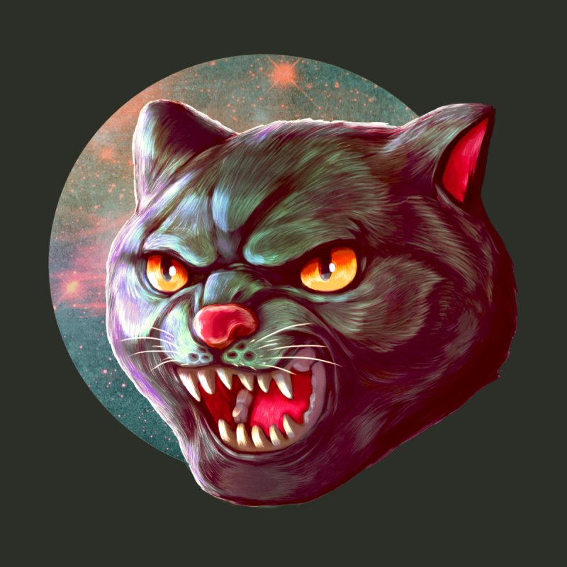 Space Cat Home Mounted Aluminum Print by villainmazk's Artist Shop