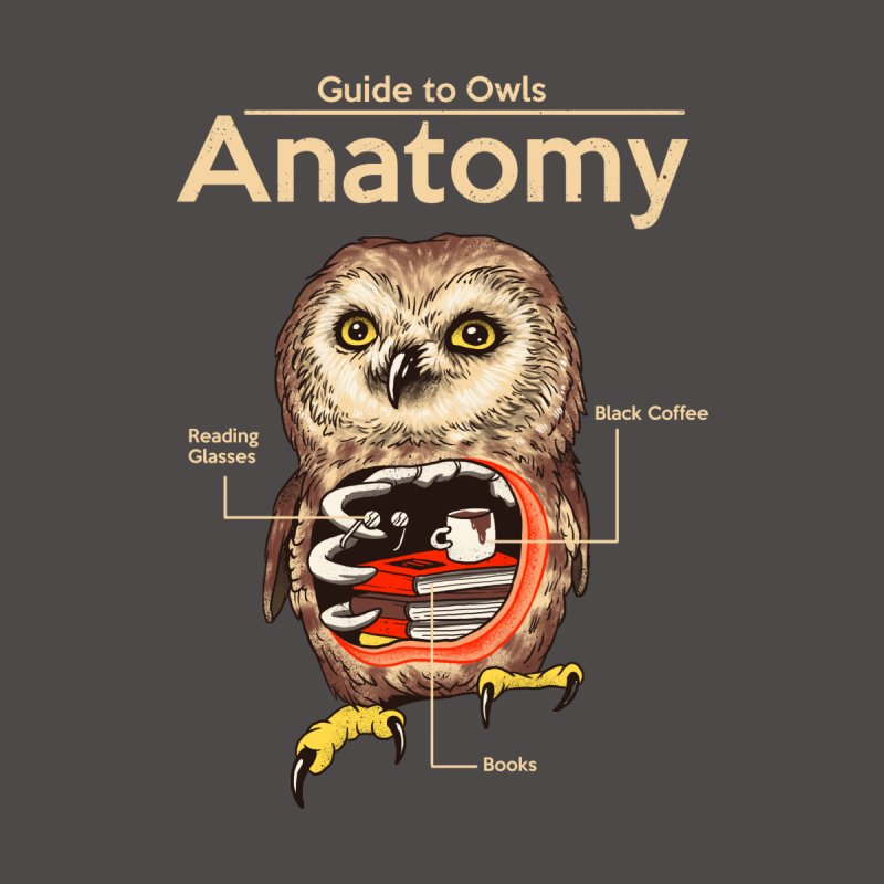 Anatomy of Owls by Vincent Trinidad Art