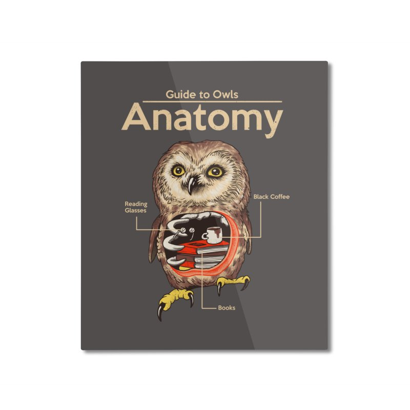 Anatomy of Owls Home Mounted Aluminum Print by Vincent Trinidad Art