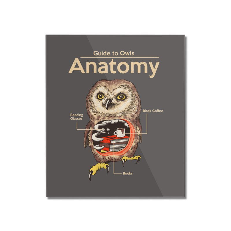 Anatomy of Owls Home Mounted Acrylic Print by Vincent Trinidad Art