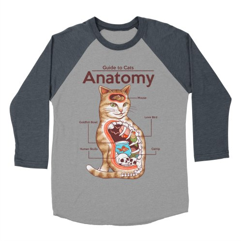 image for Anatomy of Cats